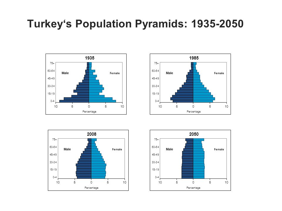 Male Turkeys Population Pyramids: Male