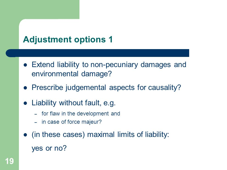 Conditions for liability Damage – Pecuniary loss, immaterial damage, environmental damage – Extent of damage Causality Illegality Fault – intent – negligence – flaw in the development 18