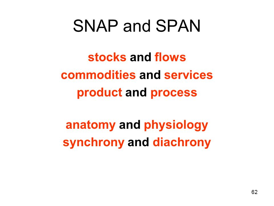 62 SNAP and SPAN stocks and flows commodities and services product and process anatomy and physiology synchrony and diachrony