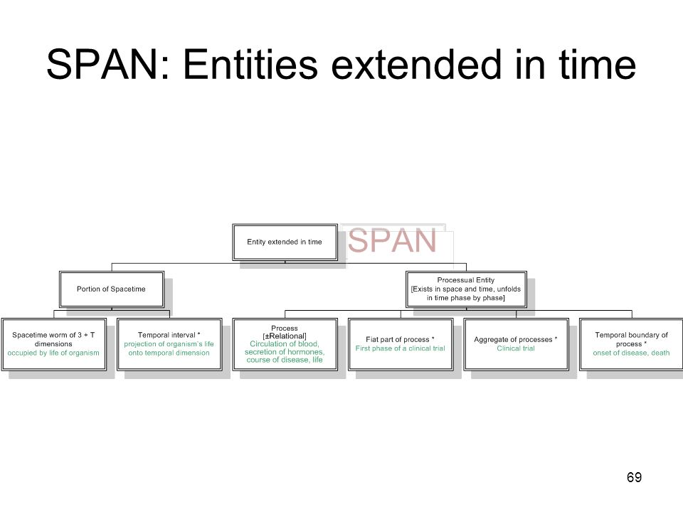 69 SPAN: Entities extended in time