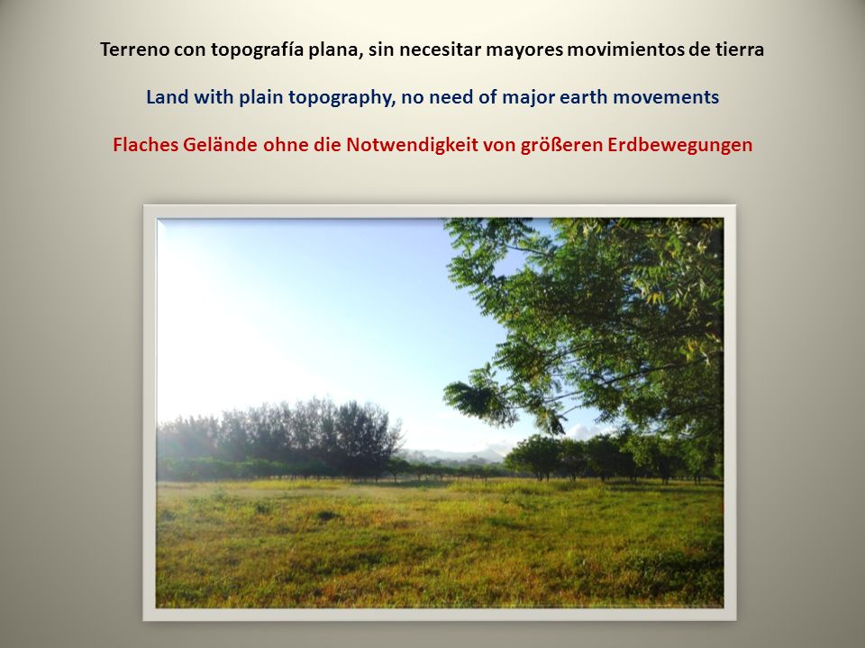 Terreno con topografía plana, sin necesitar mayores movimientos de tierra Land with plain topography, no need of major earth movements Flaches Gelände ohne die Notwendigkeit von größeren Erdbewegungen
