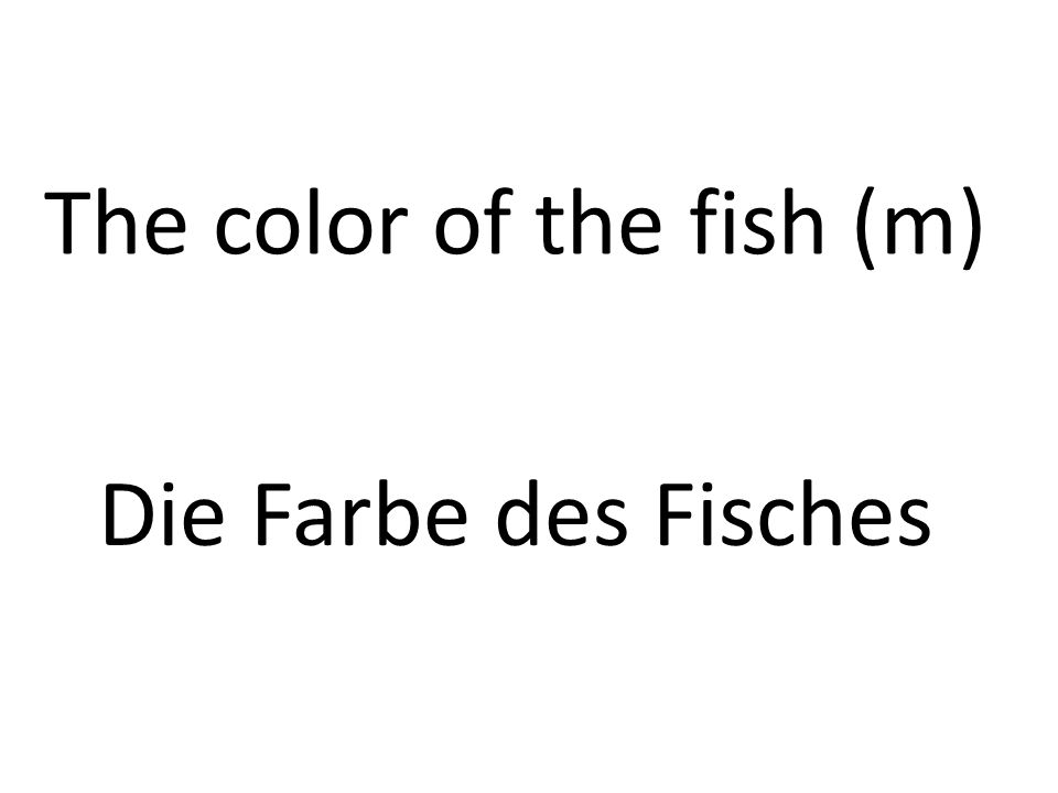 The color of the fish (m) Die Farbe des Fisches
