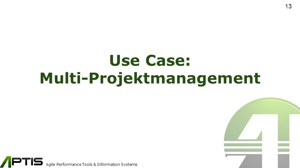 Agile Performance Tools & Information Systems Use Case: Multi-Projektmanagement 13