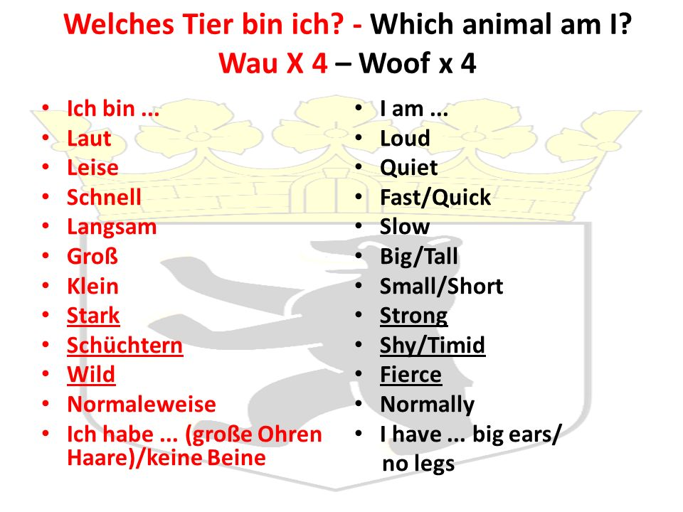 Welches Tier bin ich. - Which animal am I. Wau X 4 – Woof x 4 Ich bin...