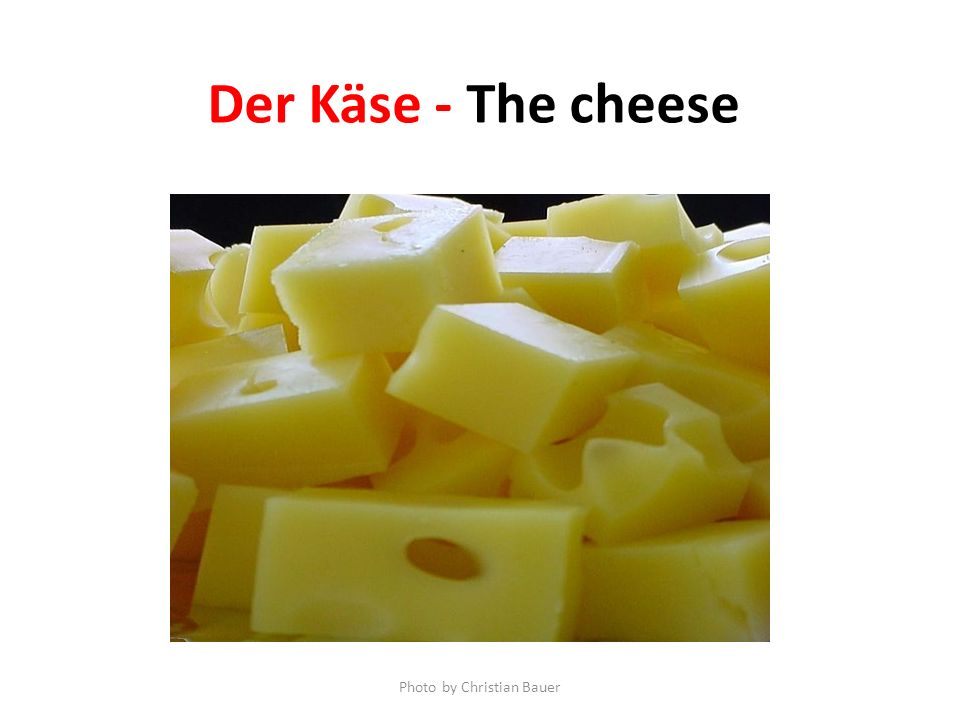 Der Käse - The cheese Photo by Christian Bauer