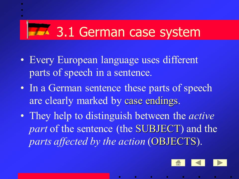 3.1 German case system Every European language uses different parts of speech in a sentence.