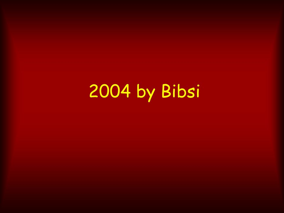 2004 by Bibsi