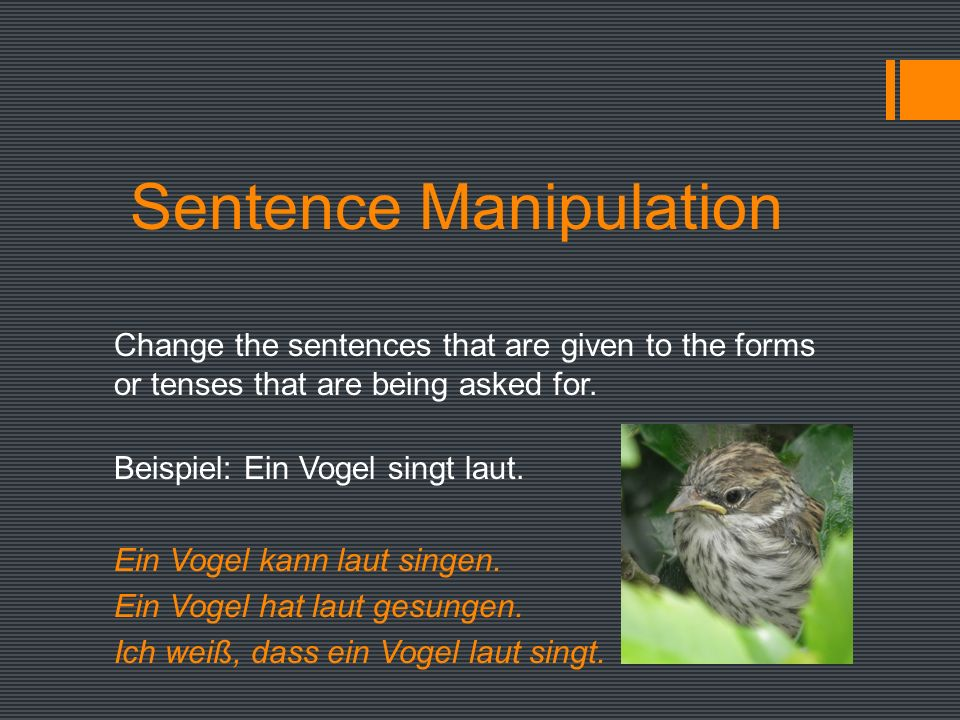 Sentence Manipulation Change the sentences that are given to the forms or tenses that are being asked for.