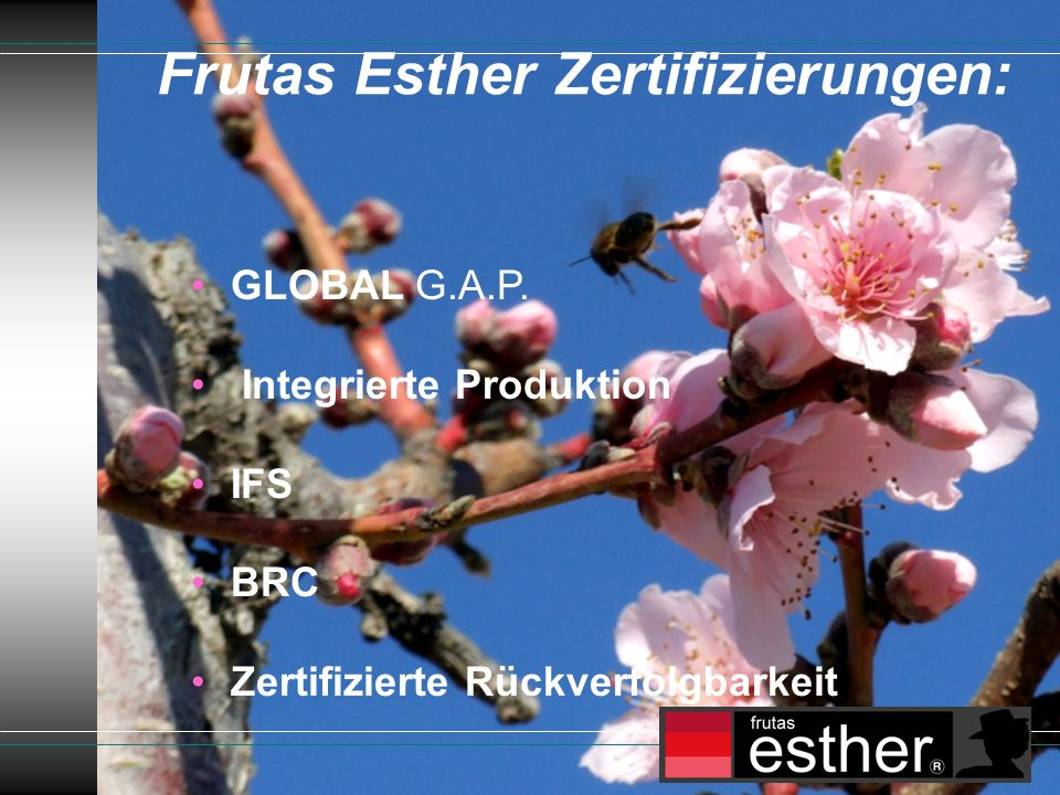 Frutas Esther Zertifizierungen: GLOBAL G.A.P.