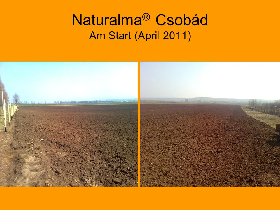Naturalma ® Csobád Am Start (April 2011)