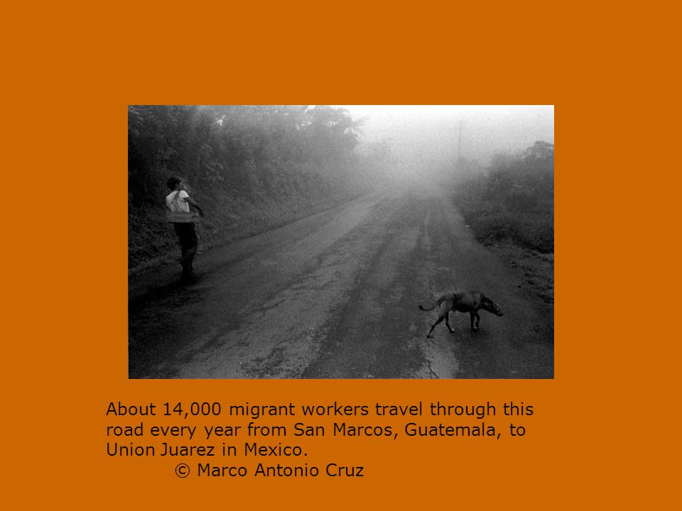 About 14,000 migrant workers travel through this road every year from San Marcos, Guatemala, to Union Juarez in Mexico.