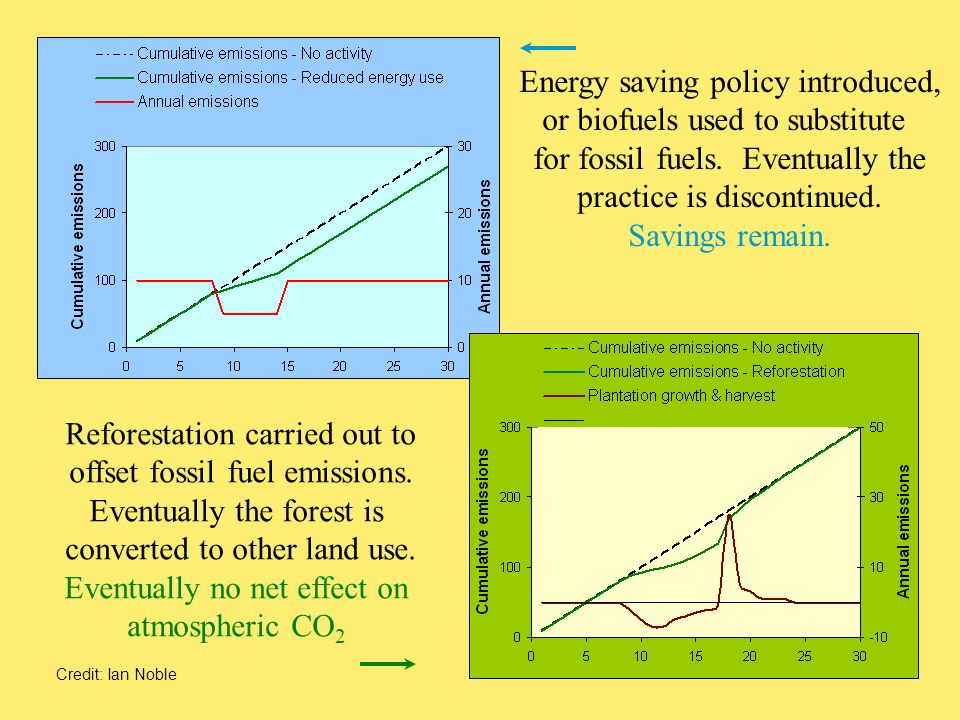 Energy saving policy introduced, or biofuels used to substitute for fossil fuels.