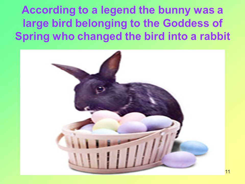11 According to a legend the bunny was a large bird belonging to the Goddess of Spring who changed the bird into a rabbit