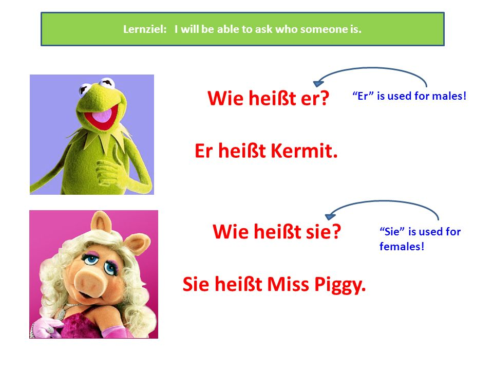 Wie heißt er. Er heißt Kermit. Lernziel: I will be able to ask who someone is.