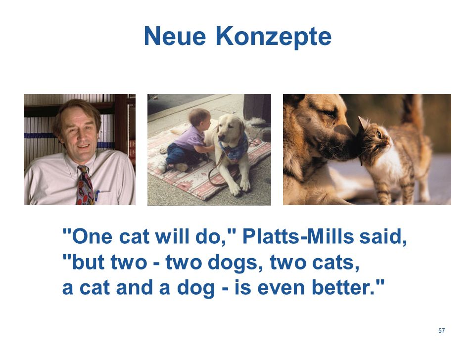 57 Neue Konzepte One cat will do, Platts-Mills said, but two - two dogs, two cats, a cat and a dog - is even better.