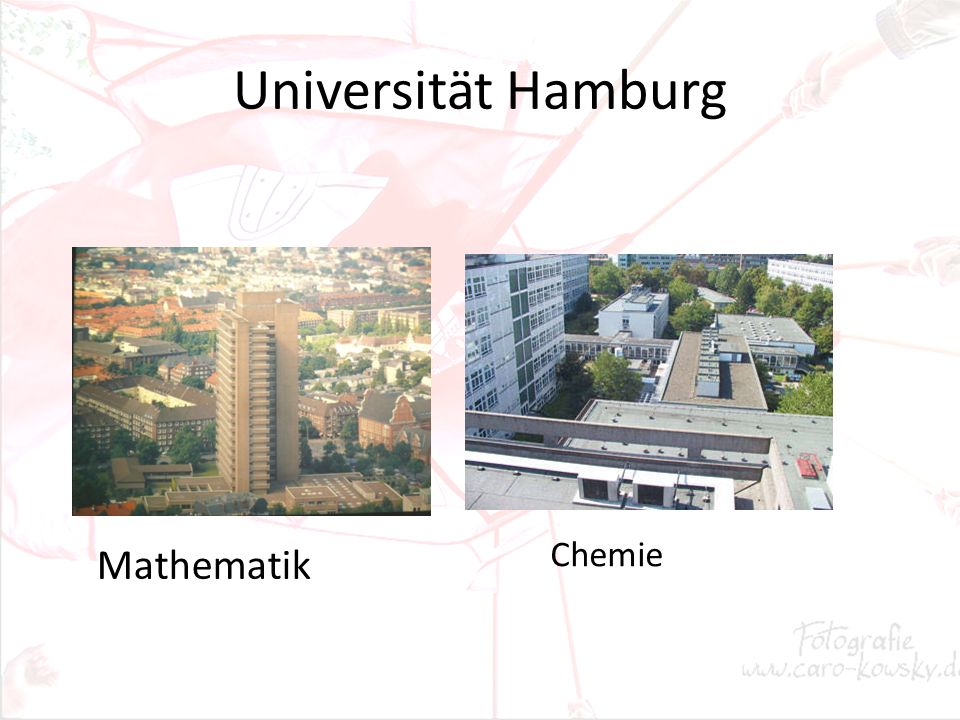 Universität Hamburg Mathematik Chemie