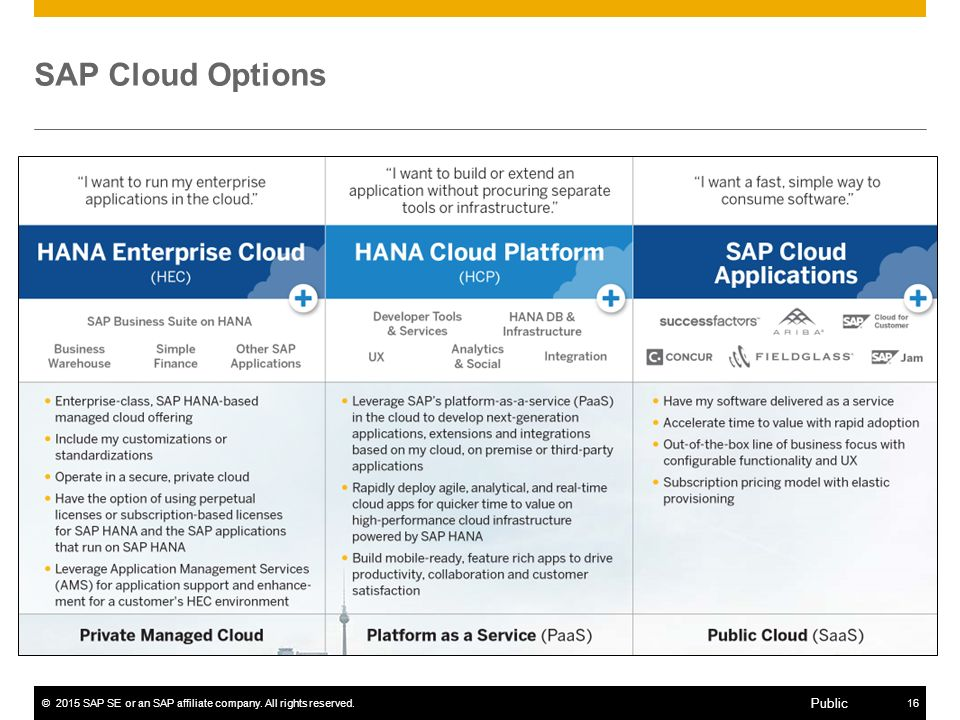 ©2015 SAP SE or an SAP affiliate company. All rights reserved.16 Public SAP Cloud Options