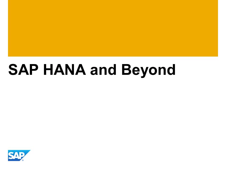 SAP HANA and Beyond