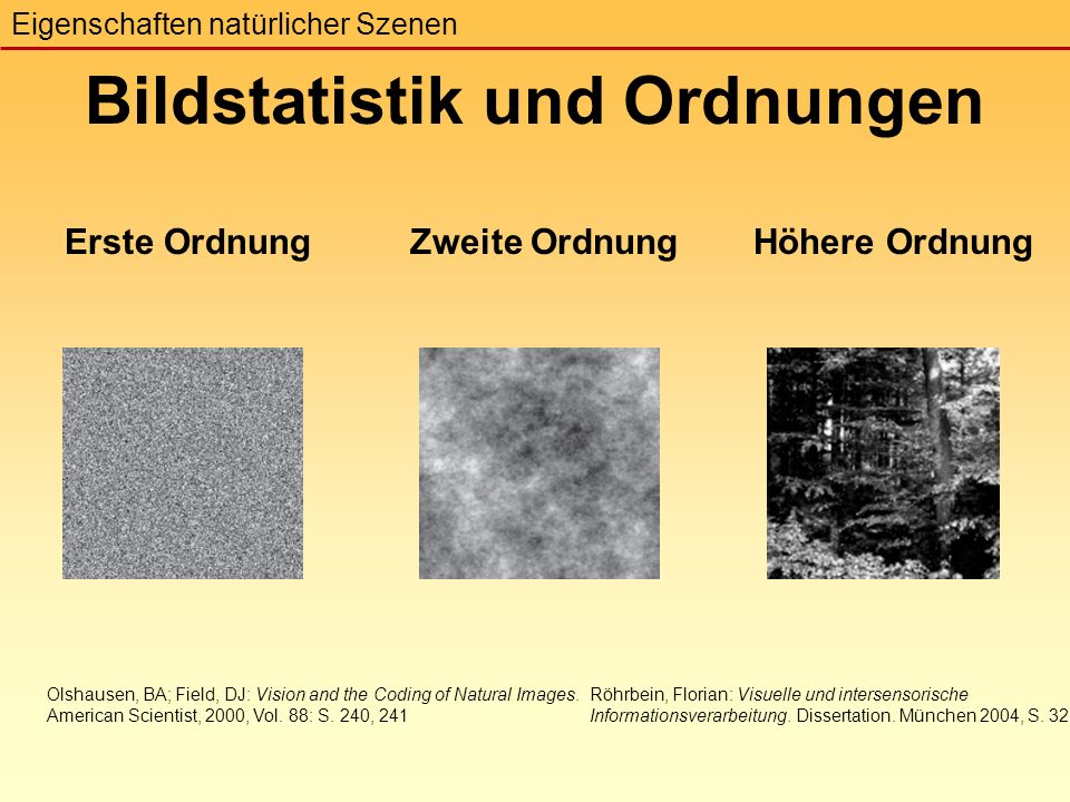 Erste OrdnungZweite OrdnungHöhere Ordnung Bildstatistik und Ordnungen Eigenschaften natürlicher Szenen Olshausen, BA; Field, DJ: Vision and the Coding of Natural Images.