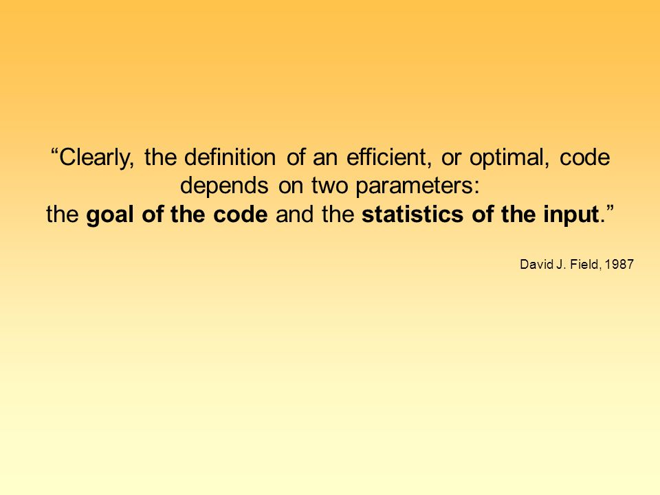 Clearly, the definition of an efficient, or optimal, code depends on two parameters: the goal of the code and the statistics of the input. David J.