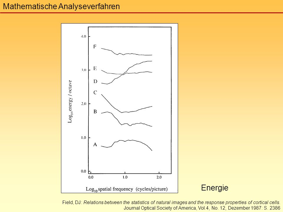 Mathematische Analyseverfahren Field, DJ: Relations between the statistics of natural images and the response properties of cortical cells.