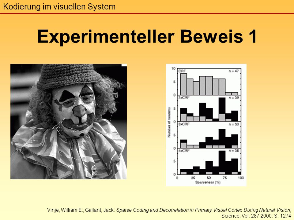 Experimenteller Beweis 1 Kodierung im visuellen System Vinje, William E.; Gallant, Jack: Sparse Coding and Decorrelation in Primary Visual Cortex During Natural Vision, Science, Vol.