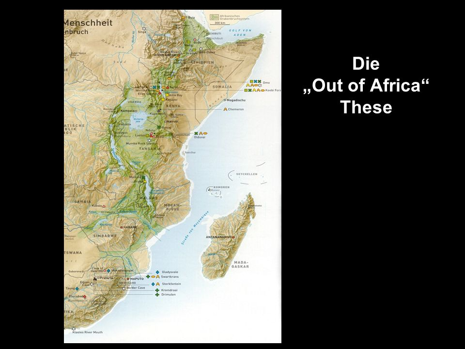 "Die ""Out of Africa These"