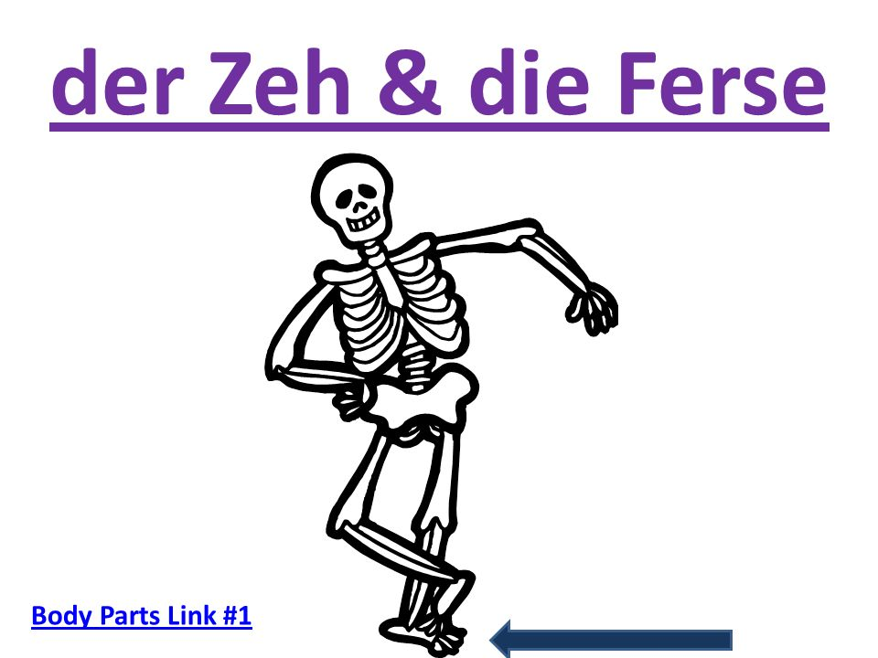 der Zeh & die Ferse Body Parts Link #1