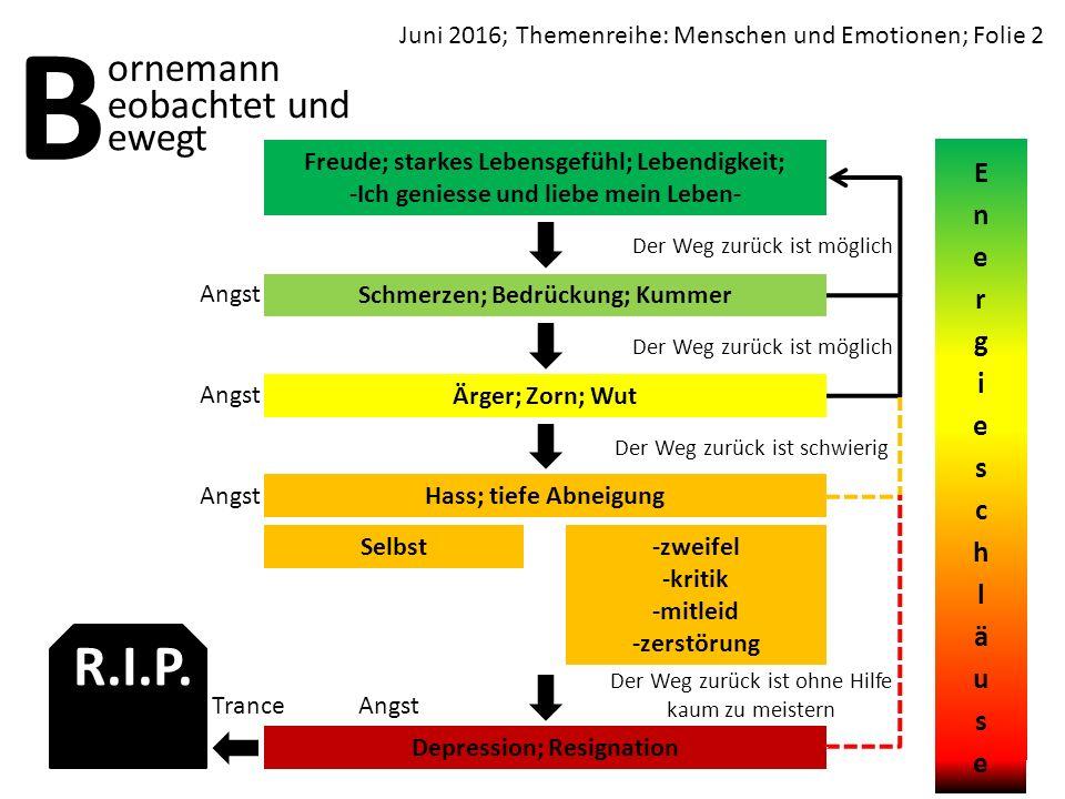 Die Hierarchie Der Gefühle Und Deren Folgen B Ornemann Ewegt Juni