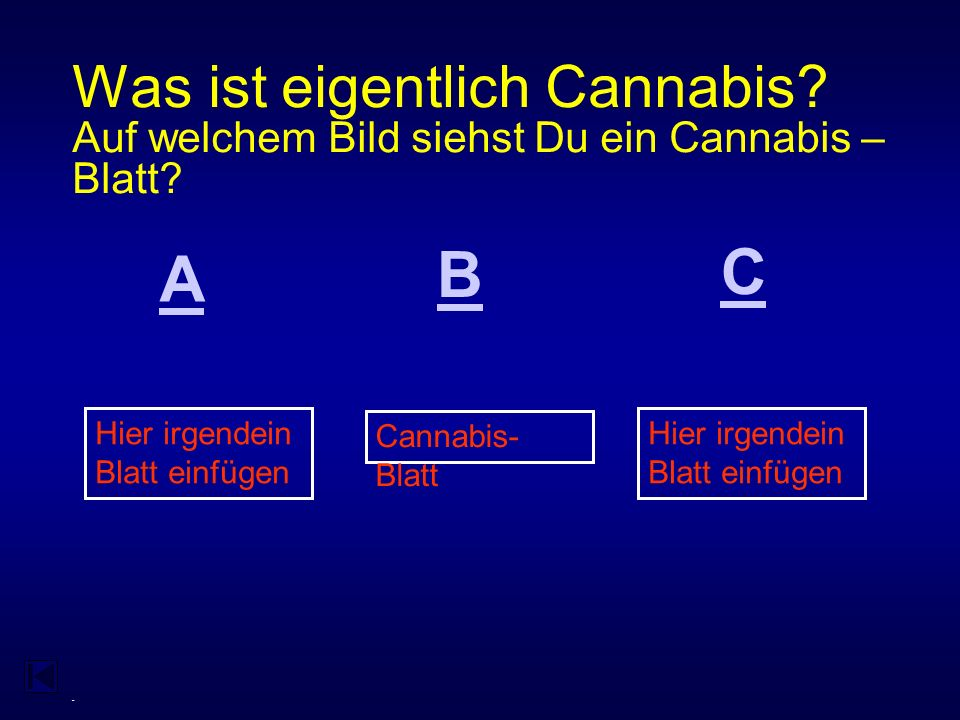 - DRUGS KNOW HOW AlkoholCannabisEcstasyNikotin 100 200 400 300 500 600