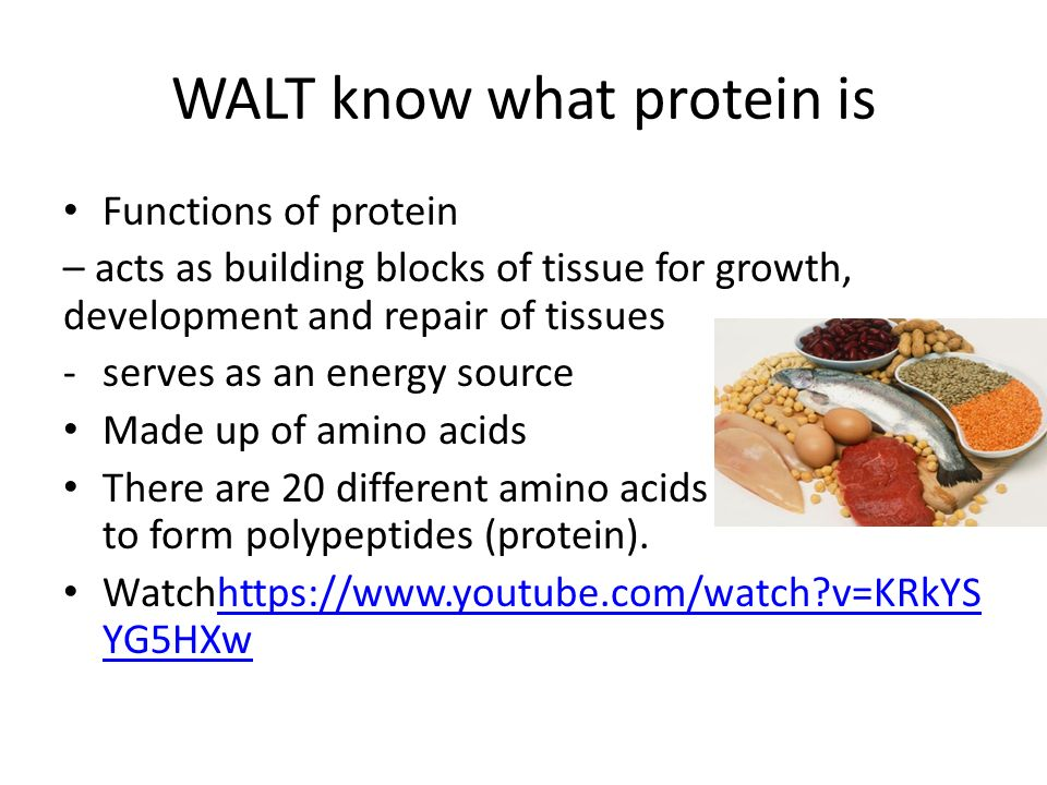 WALT know what protein is Functions of protein – acts as building blocks of tissue for growth, development and repair of tissues -serves as an energy source Made up of amino acids There are 20 different amino acids that combine to form polypeptides (protein).