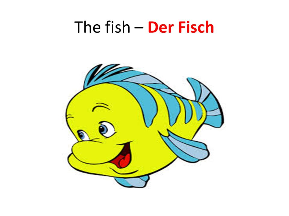 The fish – Der Fisch