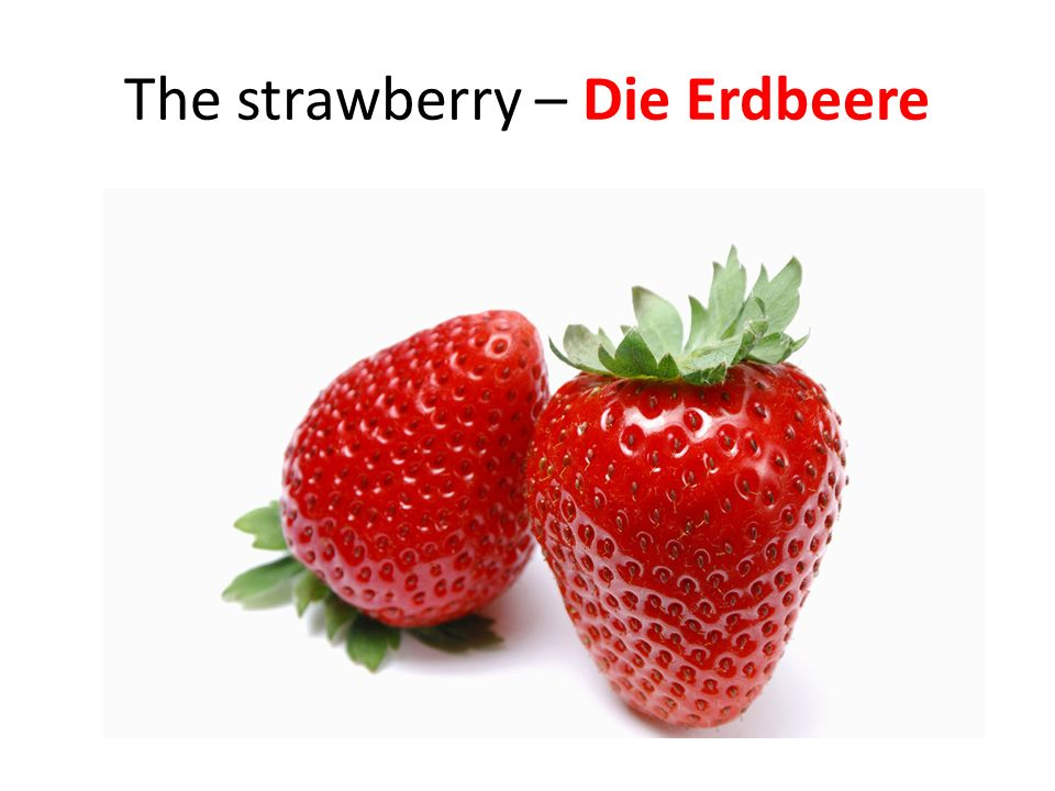The strawberry – Die Erdbeere