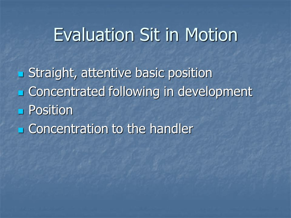 Evaluation Sit in Motion Straight, attentive basic position Straight, attentive basic position Concentrated following in development Concentrated following in development Position Position Concentration to the handler Concentration to the handler